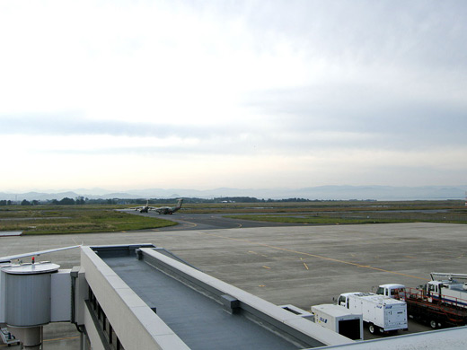 Miho Airport
