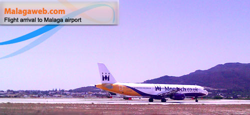 Photo of a plane landing at Malaga airport