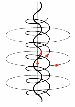 The complex self-constricting magnetic field lines and current paths in a field-aligned Birkeland current which may develop in a plasma.