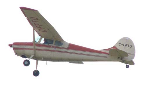 Cessna 170B in flight