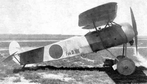 Fokker D.VIII in Dutch markings