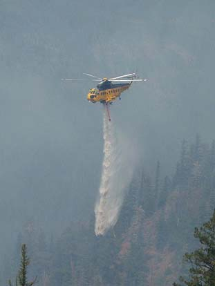 A Carson Helicopters Fire King drops on the 2007 WSA Lightning Complex fire.