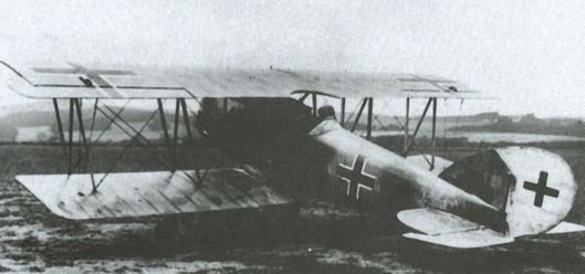 Captured Pfalz D.XII (serial 1970/18) in Canada after the war