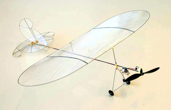 A model aircraft, weighing 6 grams.