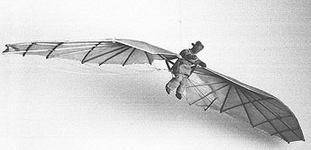 Model of Jan Wnęk's glider. Kraków Museum of Ethnography.
