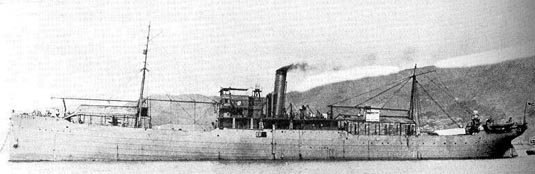 The Japanese seaplane carrier Wakamiya conducted the world's first naval-launched air raids in September 1914.
