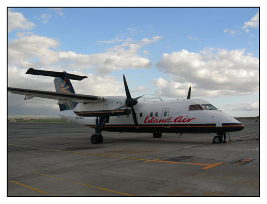 The De Havilland Dash 8-100.